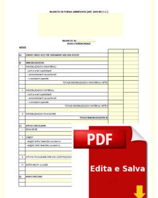 Schema di Bilancio editabile